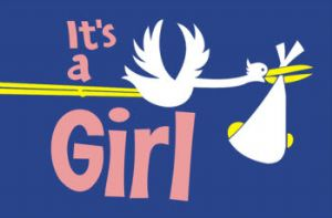 It's a Girl (Stork) Large Flag - 5' x 3'